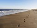 Die Spur am Strand 2