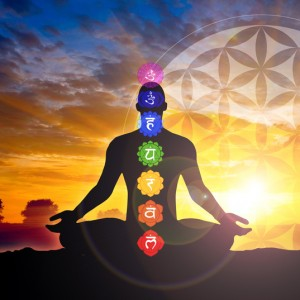Chakra, Meditation, Yoga, Blume des Lebens