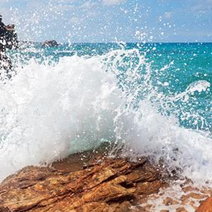 Wasser, Meer, Leben, Lebenskraft, Lebendigkeit