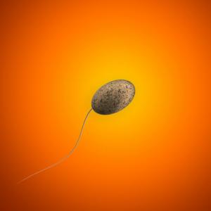 Spermium, Sperma, Klarheit, Schöpfung